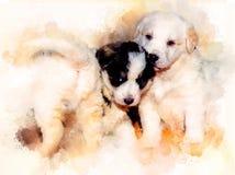 Beau groupe adorable de chiots de chien de berger et de fond doucement brouillé d'aquarelle Photo stock