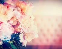 Beau groupe de pivoines avec l'éclairage ensoleillé de bokeh, couleur en pastel rose Photographie stock libre de droits