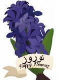 Beau Hyacinth Bouquet pourpre avec le rouleau autour de lui pour Nowruz, illustration de vecteur Photo stock