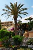 Beau jardin à Corfou, Grèce Image libre de droits