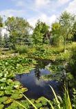 Beau jardin avec l'étang d'eau-lis Photographie stock libre de droits