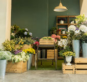 Beau jardin avec la boîte de fleur Photo libre de droits
