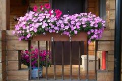 Beau jardin avec la boîte de fleur et les plantes en pot sur le porche photographie stock libre de droits