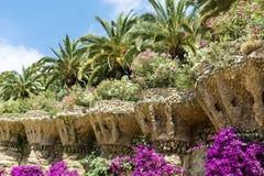 Beau jardin avec les paumes et le bougainvillée en parc Guell, Barcelone, Espagne photos stock