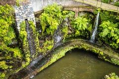 Beau jardin chez Monte au-dessus de Funchal Madère Photos libres de droits