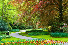 Beau jardin de ressort de Keukenhof photo stock