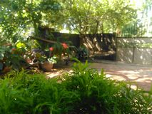 Beau jardin du Sri Lanka photo libre de droits