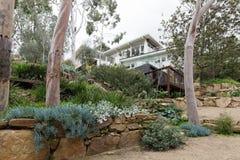 Beau jardin indigène aménagé en parc établi dans le hom australien image libre de droits