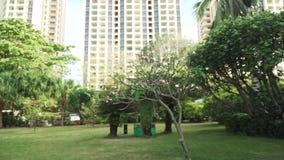 Beau jardin tropical sur la vidéo unfocused de longueur d'actions de laps de temps d'Intime Sanya 5 de station de vacances de sit clips vidéos