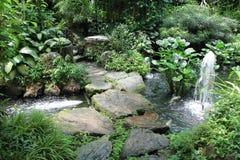Beau jardin vert Photo libre de droits