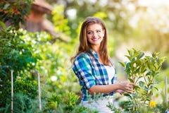 Beau jardinage de jeune femme Photographie stock