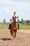 Beau jeune cheval blond de châtaigne d'équitation de femme Images libres de droits