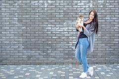 Beau jeune heureux de jolie femme avec de longs cheveux sombres tenant le petit chiot de chien sur le fond de ville de rue avec l Images stock