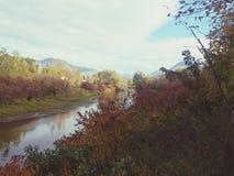 Beau jour d'automne ! Photo stock