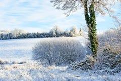 Beau jour ensoleillé pendant l'hiver sur la rivière Images libres de droits