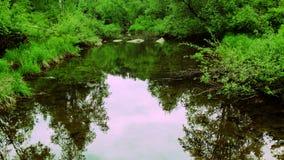 Beau jour par la rivière photographie stock libre de droits