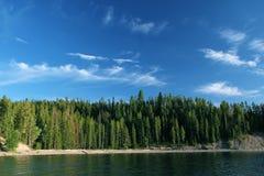 Beau lac avec Forrest Images stock