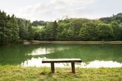 Beau lac avec les feuilles et l'herbe vertes de lotus Photographie stock libre de droits
