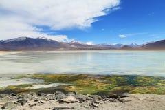 Beau lac blanc dans le désert de la Bolivie Photo libre de droits