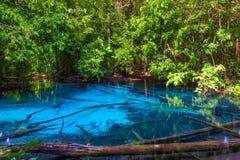Beau lac bleu dans la réserve naturelle de Krabi Photos libres de droits