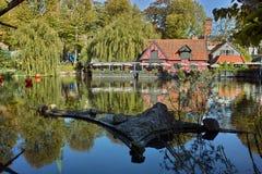 Beau lac dans le tivoli Photos libres de droits
