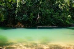Beau lac de forêt avec de l'eau vert dans une forêt de pin Image stock