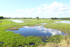 Beau lac en Thaïlande du nord Images stock