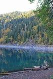 Beau lac entouré par des montagnes et des forêts en automne Malaya Ritsa, Abkhazie photo libre de droits