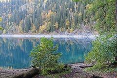 Beau lac entouré par des montagnes et des forêts en automne Malaya Ritsa, Abkhazie photographie stock libre de droits