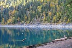 Beau lac entouré par des montagnes et des forêts en automne Malaya Ritsa, Abkhazie photos stock