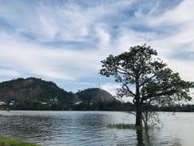 Beau lac Kurunegala avec la roche célèbre d'éléphant images stock