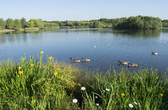 Beau lac Manvers Photographie stock