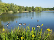 Beau lac Manvers Images libres de droits