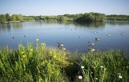 Beau lac Manvers Photographie stock libre de droits