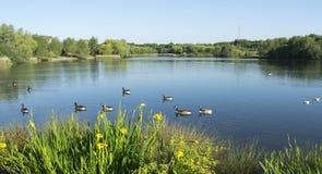 Beau lac Manvers Image stock