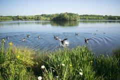 Beau lac Manvers Image libre de droits