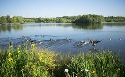 Beau lac Manvers Photo stock