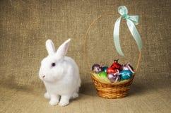 Beau lapin de Pâques propre blanc à côté d'un panier en osier avec des oeufs dans le tissu naturel de toile de jute de krashenyym Photos stock