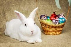 Beau lapin de Pâques propre blanc à côté d'un panier en osier avec des oeufs dans le tissu naturel de toile de jute de krashenyym Photo libre de droits