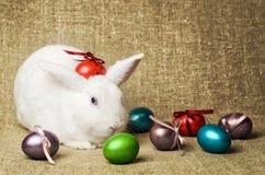 Beau lapin de Pâques propre blanc à côté d'un panier en osier avec des oeufs dans le tissu naturel de toile de jute de krashenyym Photographie stock libre de droits