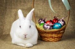 Beau lapin de Pâques propre blanc à côté d'un panier en osier avec des oeufs dans le tissu naturel de toile de jute de krashenyym Photographie stock