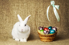 Beau lapin de Pâques propre blanc à côté d'un panier en osier avec des oeufs dans le tissu naturel de toile de jute de krashenyym Images stock