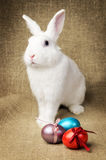 Beau lapin de Pâques propre blanc à côté d'un panier en osier avec des oeufs dans le tissu naturel de toile de jute de krashenyym Photo stock