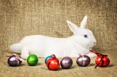 Beau lapin de Pâques propre blanc à côté d'un panier en osier avec des oeufs dans le tissu naturel de toile de jute de krashenyym Image libre de droits