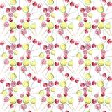 Beau les sucreries de caramel tordues par citron frais délicieux savoureux délicieux merveilleux coloré lumineux de dessert d'été Photo libre de droits