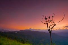Beau lever de soleil à la petite crête d'Adams en Ella, Sri Lanka Image stock