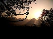 Beau lever de soleil Image libre de droits