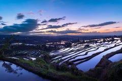 Beau lever de soleil au-dessus des terrasses de riz de Jatiluwih Image stock