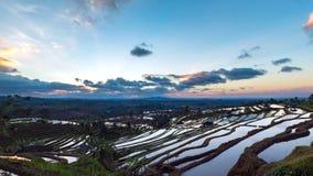 Beau lever de soleil au-dessus des terrasses de riz de Jatiluwih Photos libres de droits