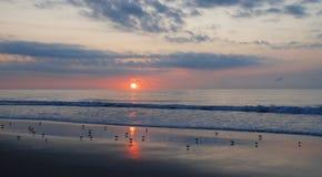Beau lever de soleil au-dessus du rivage. Photos libres de droits
